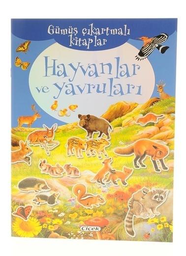Çiçek Yayıncılık Gümüş Çıkartmalı Kitaplar-Hayvanlar Ve Yavruları Renkli